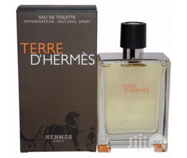 Hermes Terre D'Hermes Men 100ml EDT Spray
